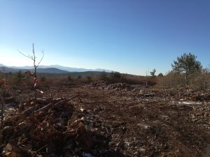Devastacija Lukovca