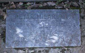 Petar Milardovich